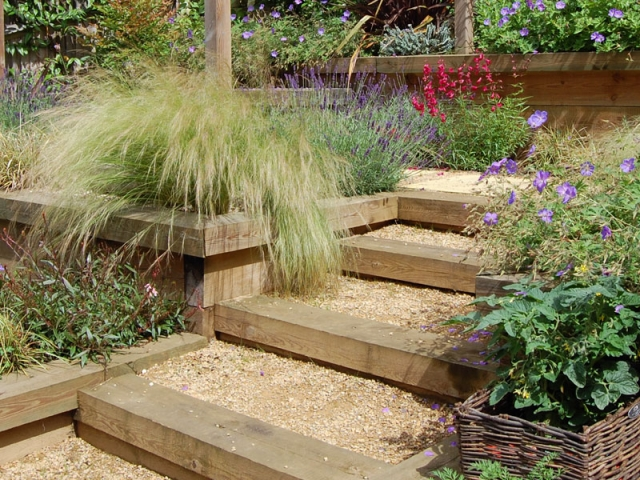Terracing softened by planting with sleeper and gravel steps