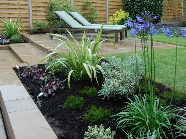 Phormium yellow wave, with Euphorbia glacier blue and Agapanthus Big Blue