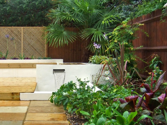 Rendered White Wall with Water Blade and Tropical Planting