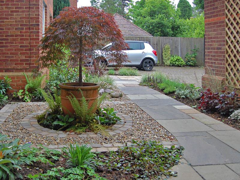Front garden with feature tree
