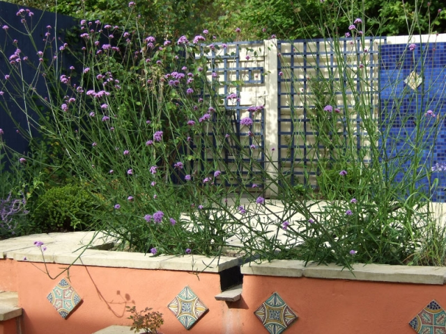 Moroccan Courtyard Garden with blue tiled feature wall and central rill