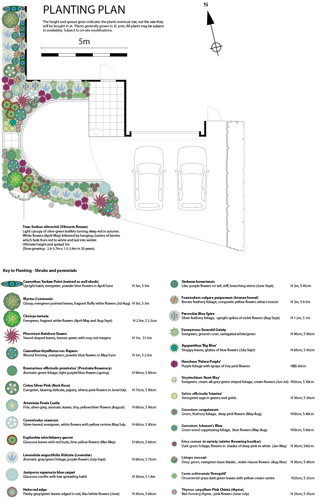 Sample Planting Plan