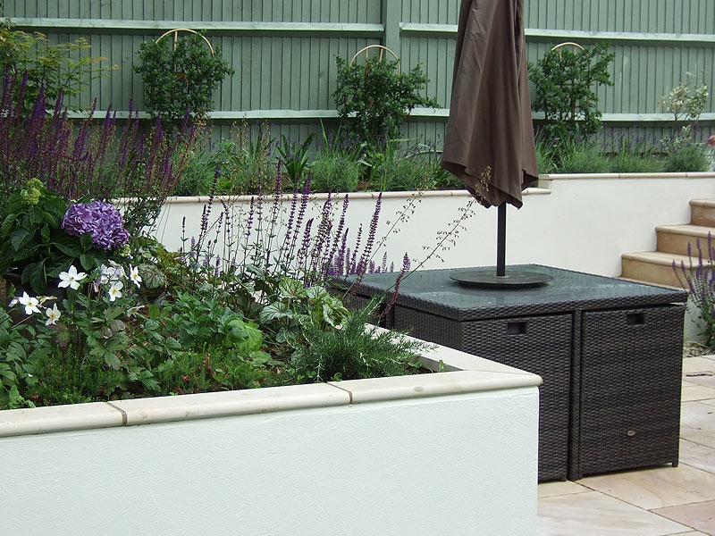 Contemporary garden, rendered walls and bullnose coping