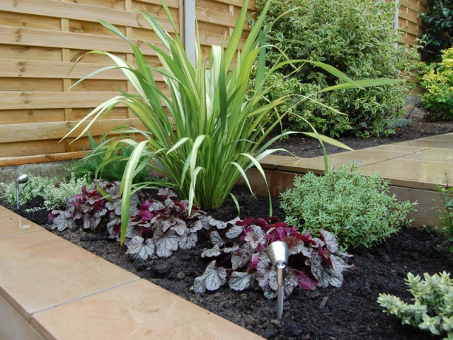 Sawn sandstone raised beds with architectural planting - phormium yellow wave and heuchera