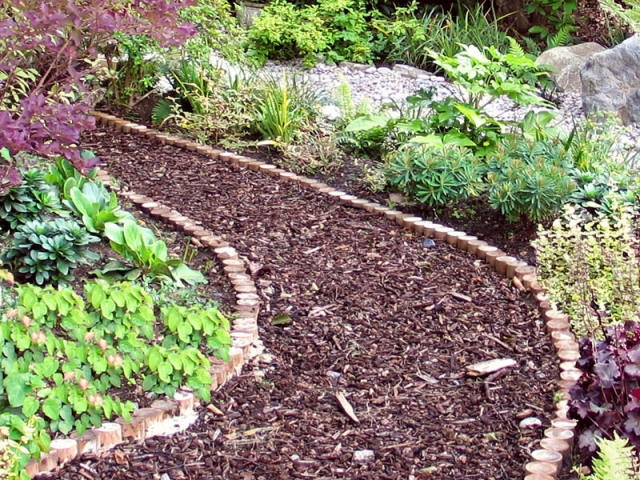 Woodland bark mulch path