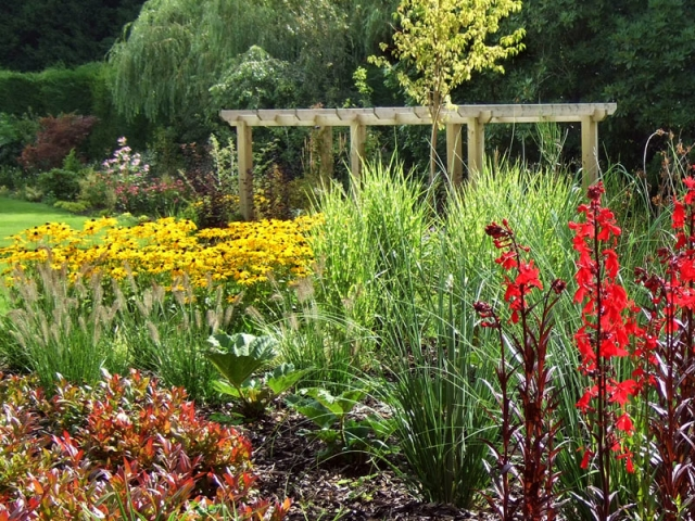 Late summer perennials and grasses with pergola