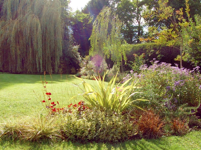 Large mixed borders in late summer with weeping willow